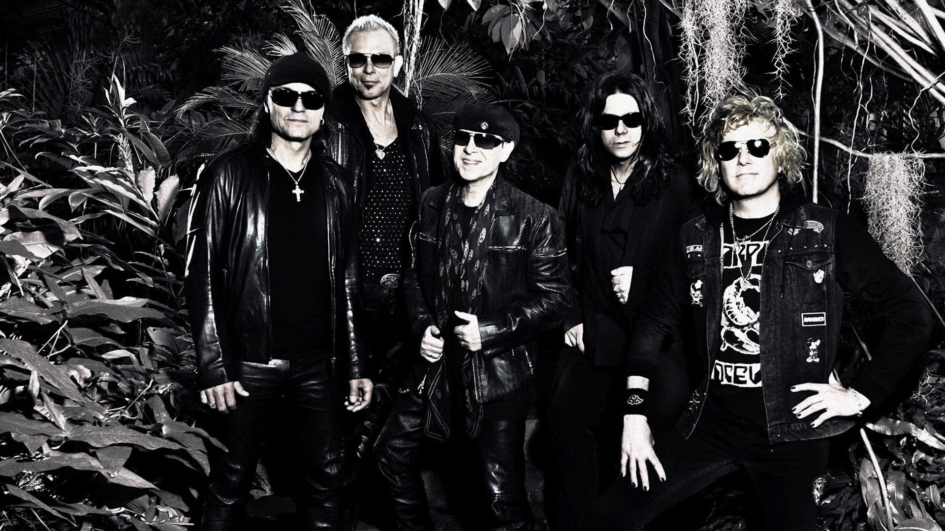 Scorpions Widescreen for desktop