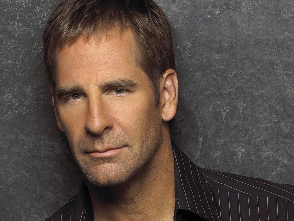 Scott Bakula Widescreen for desktop