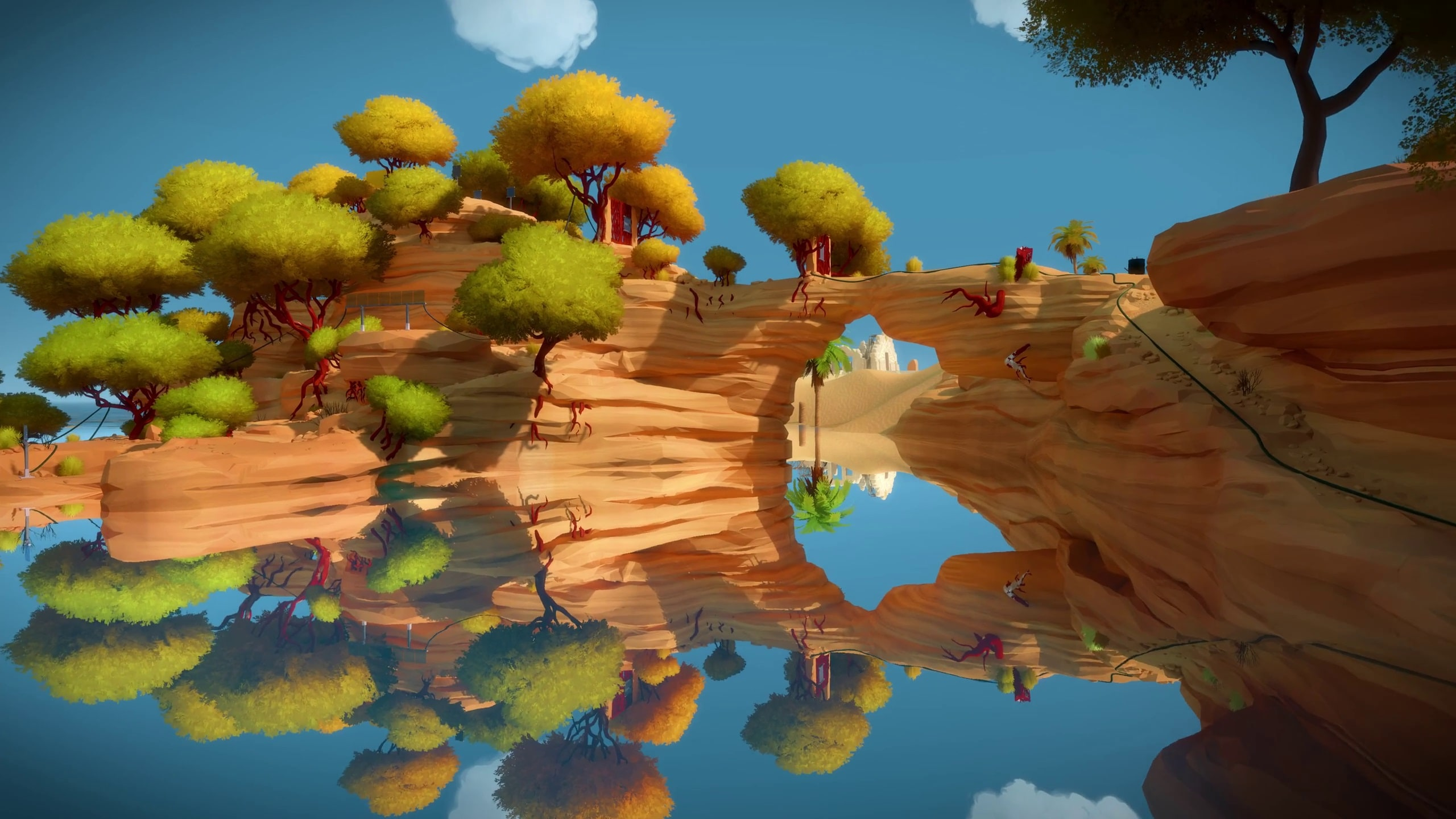 The Witness Widescreen for desktop