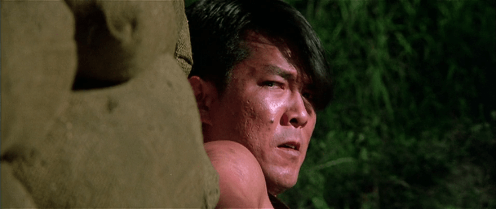 Yuen Biao Widescreen for desktop