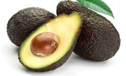 Avocado High
