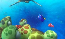 Finding Dory High