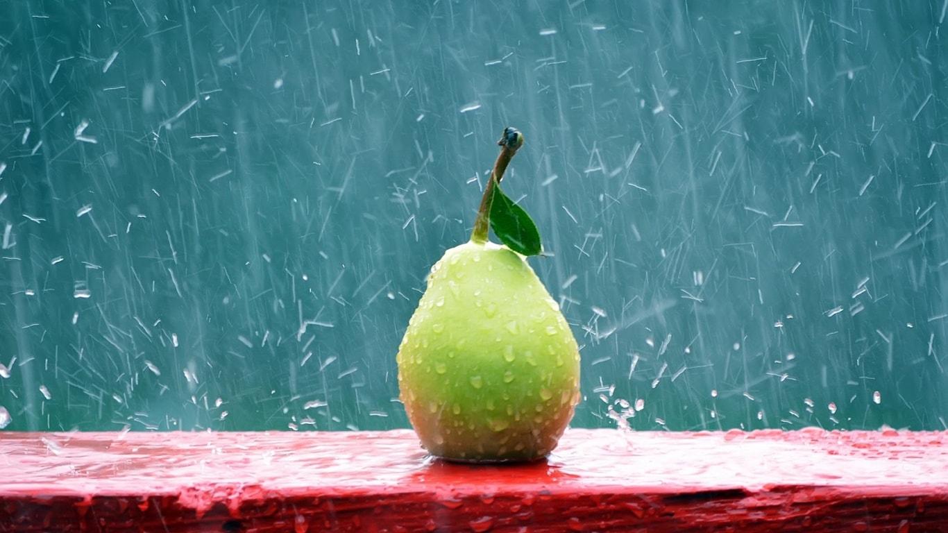 Guava widescreen for desktop