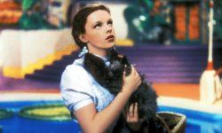 Judy Garland High
