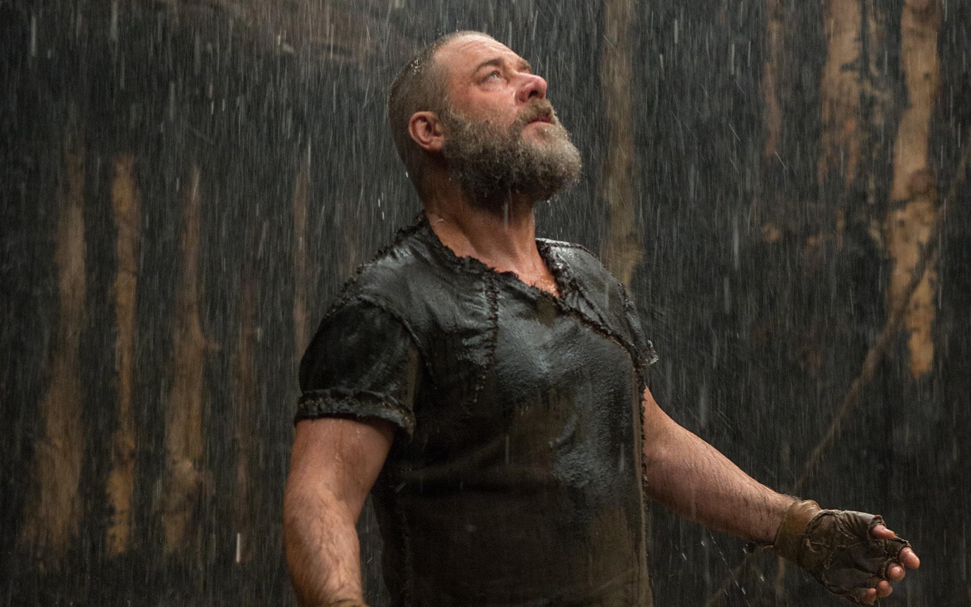 Noah Movie High