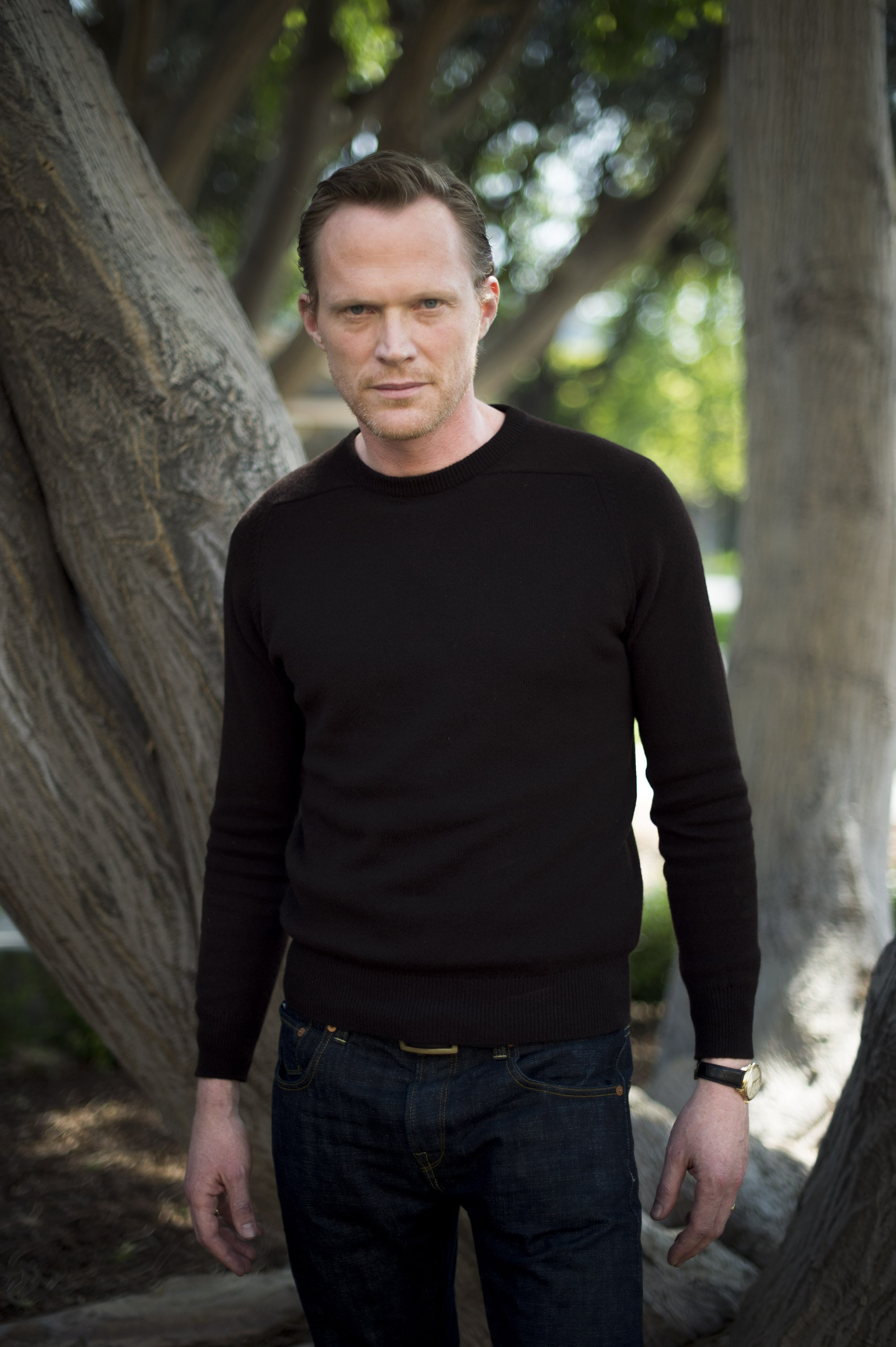 Paul Bettany High