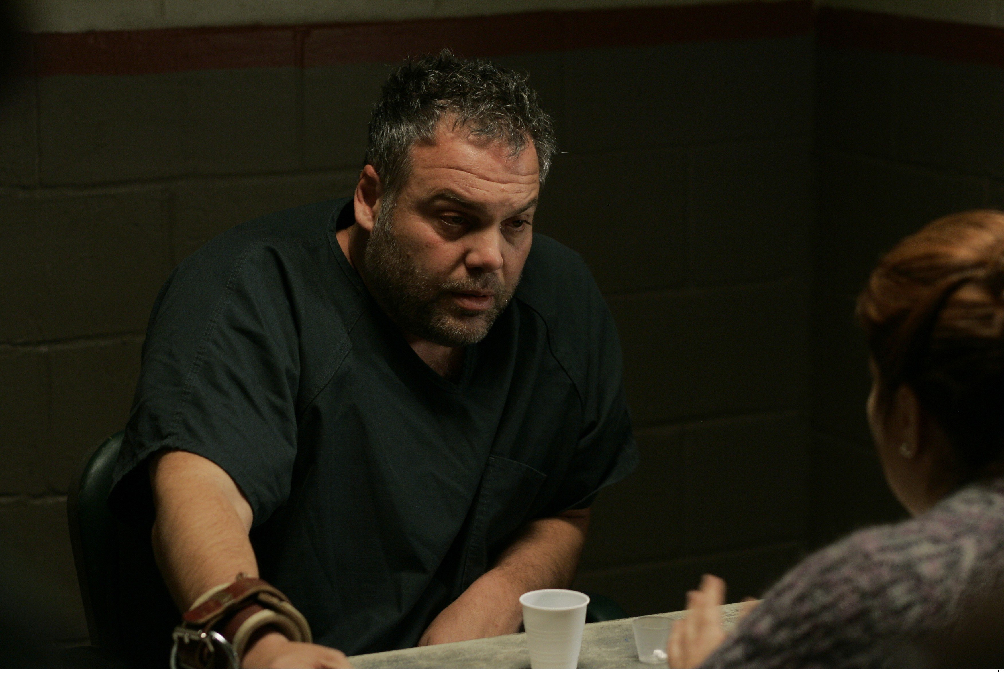 Vincent D Onofrio High