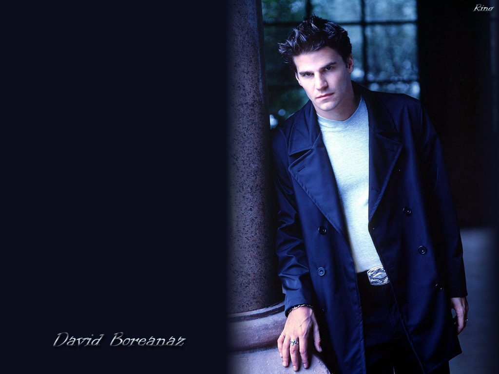 David Boreanaz HD