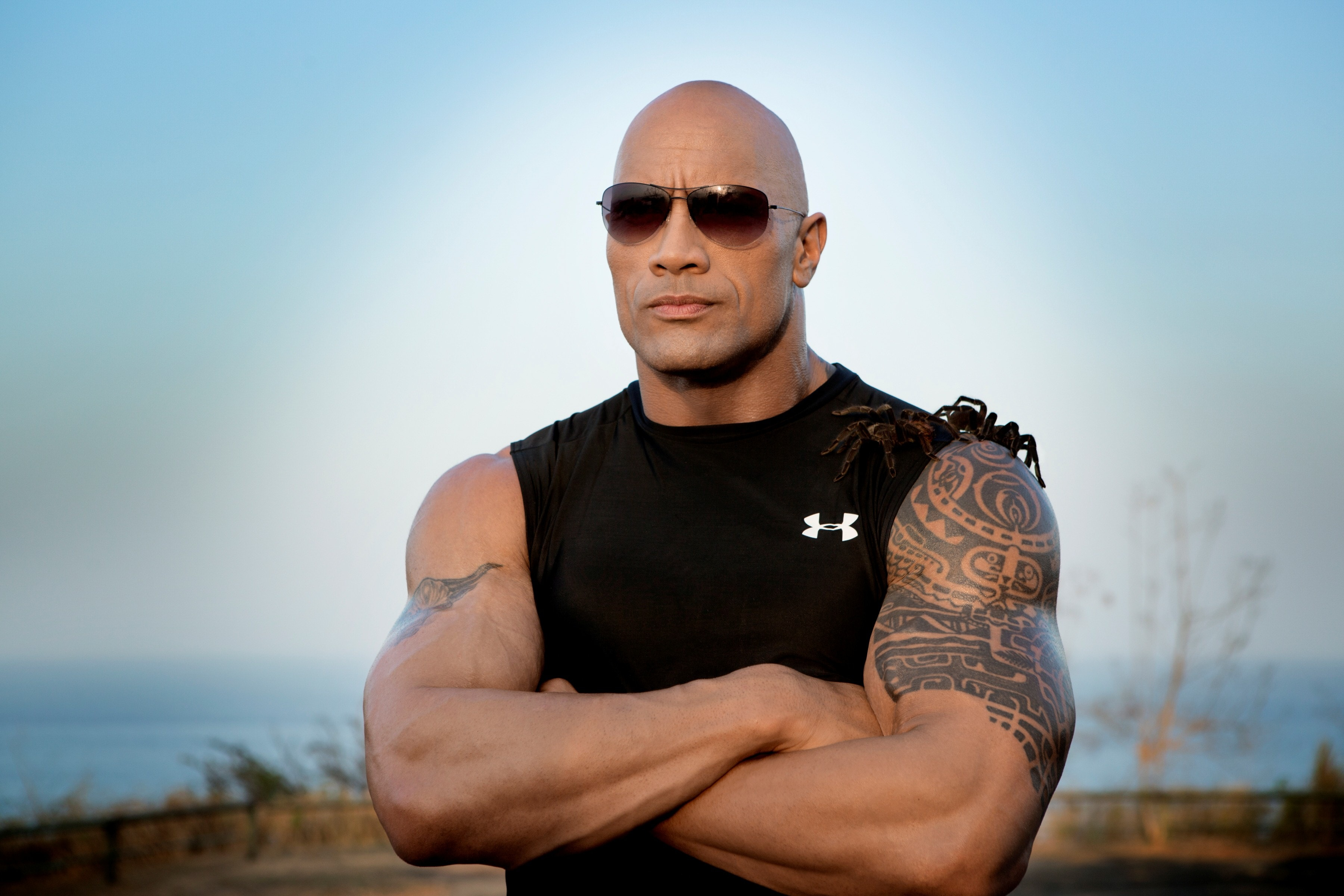 Dwayne Johnson Free