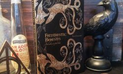 Fantastic Beasts and Where to Find Them Free