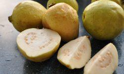 Guava desktop wallpaper