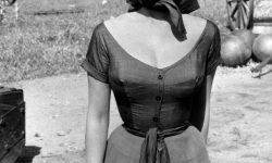 Sophia Loren HD