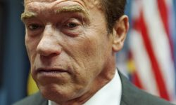 Arnold Schwarzenegger Free