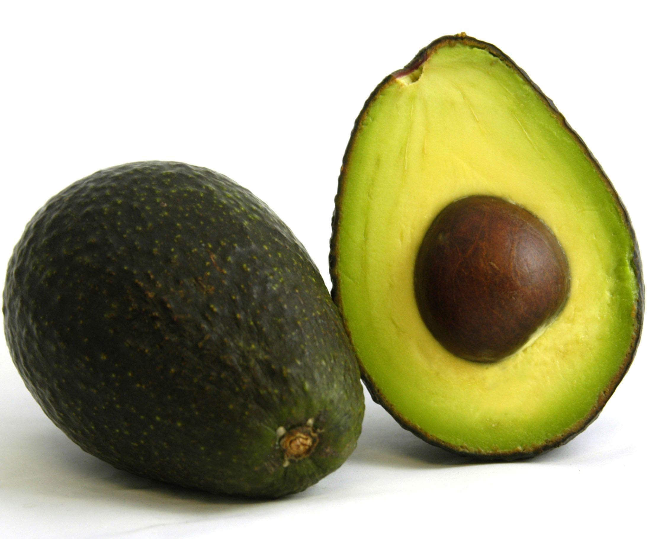 Avocado Free