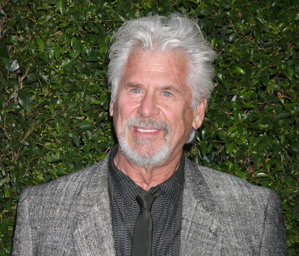 Barry Bostwick Free