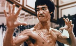 Bruce Lee Free