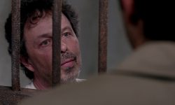 Curtis Armstrong Free