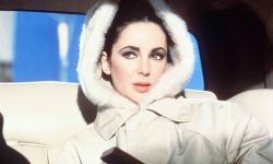Elizabeth Taylor Free