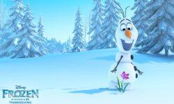 Frozen Free