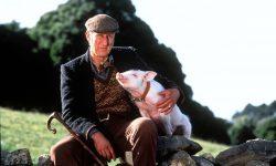 James Cromwell Free