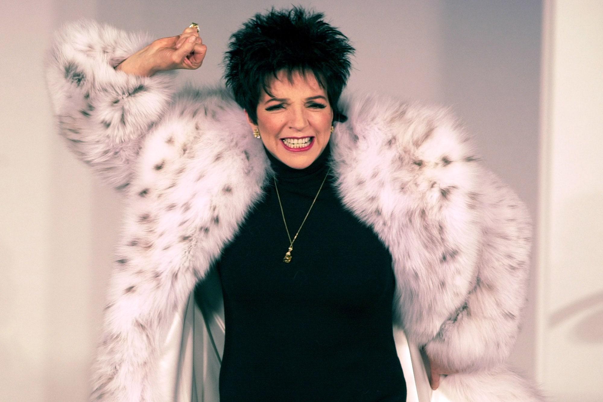 Liza Minnelli Free
