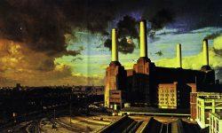 Pink Floyd Free