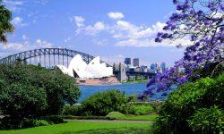 Sydney Free