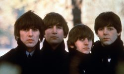 The Beatles Free