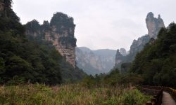 Tianzi Mountain Free
