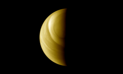 Venus Free