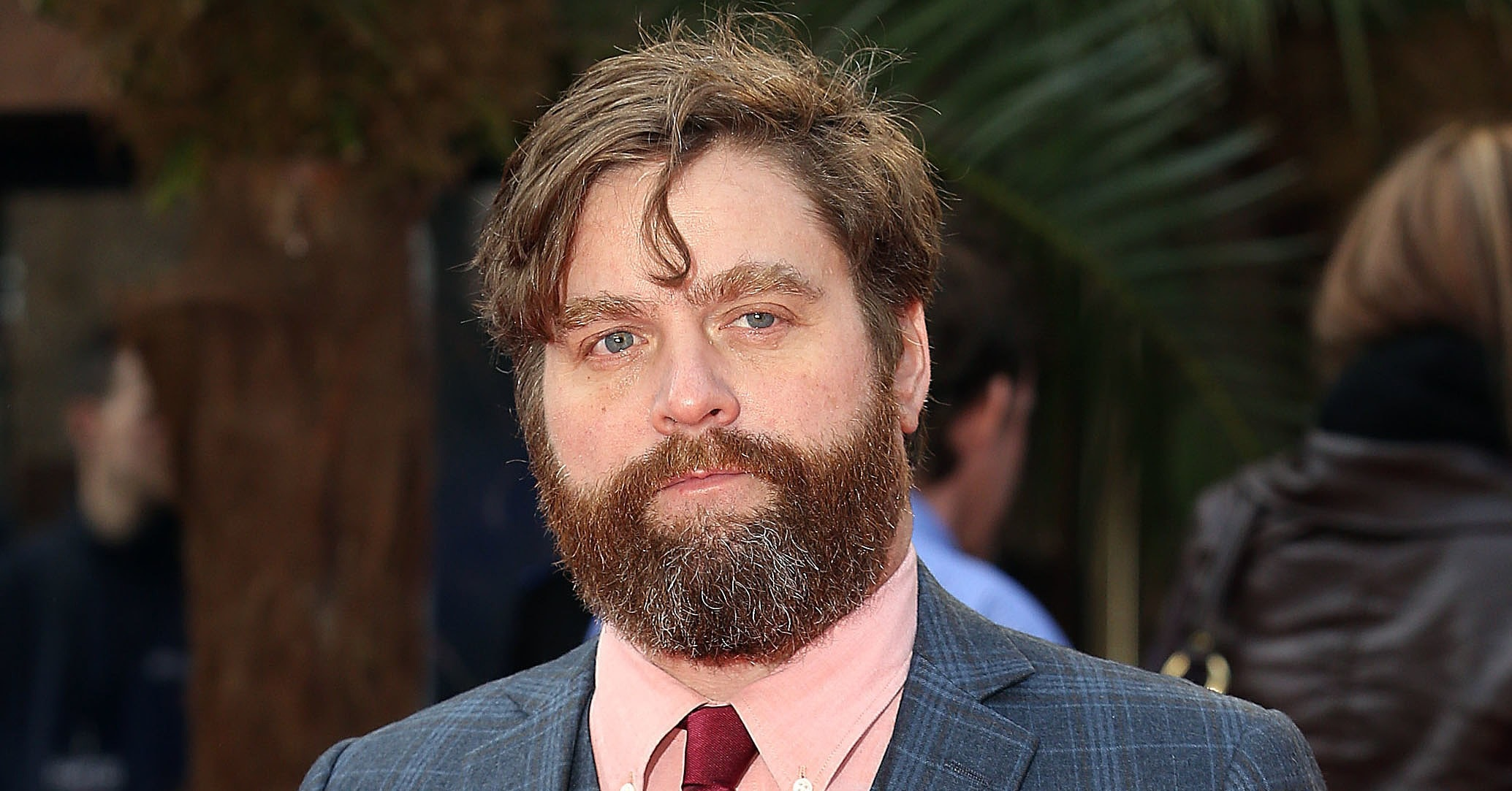 Zach Galifianakis Free