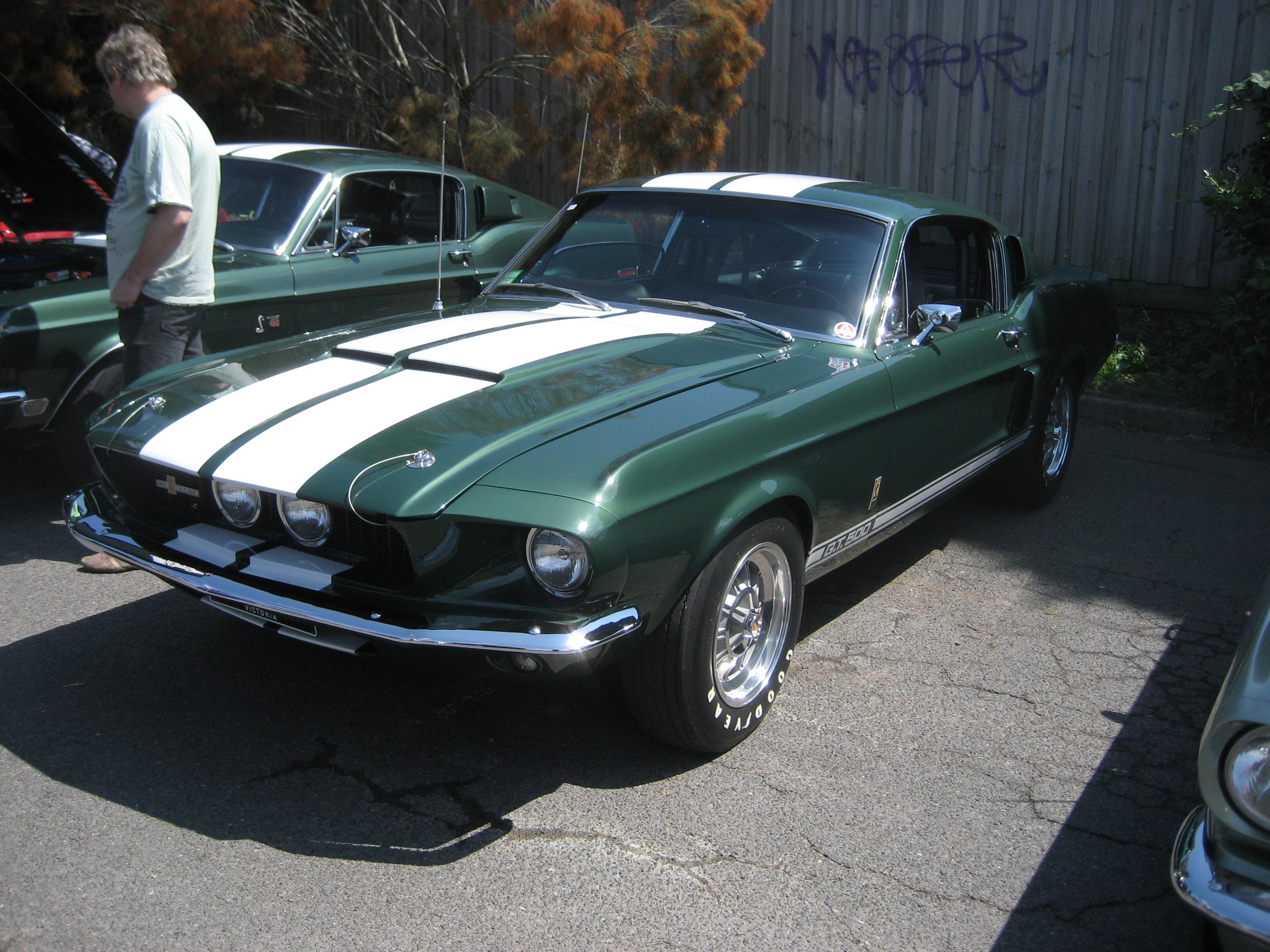 1967 Shelby GT500 Widescreen