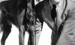 Clark Gable Widescreen