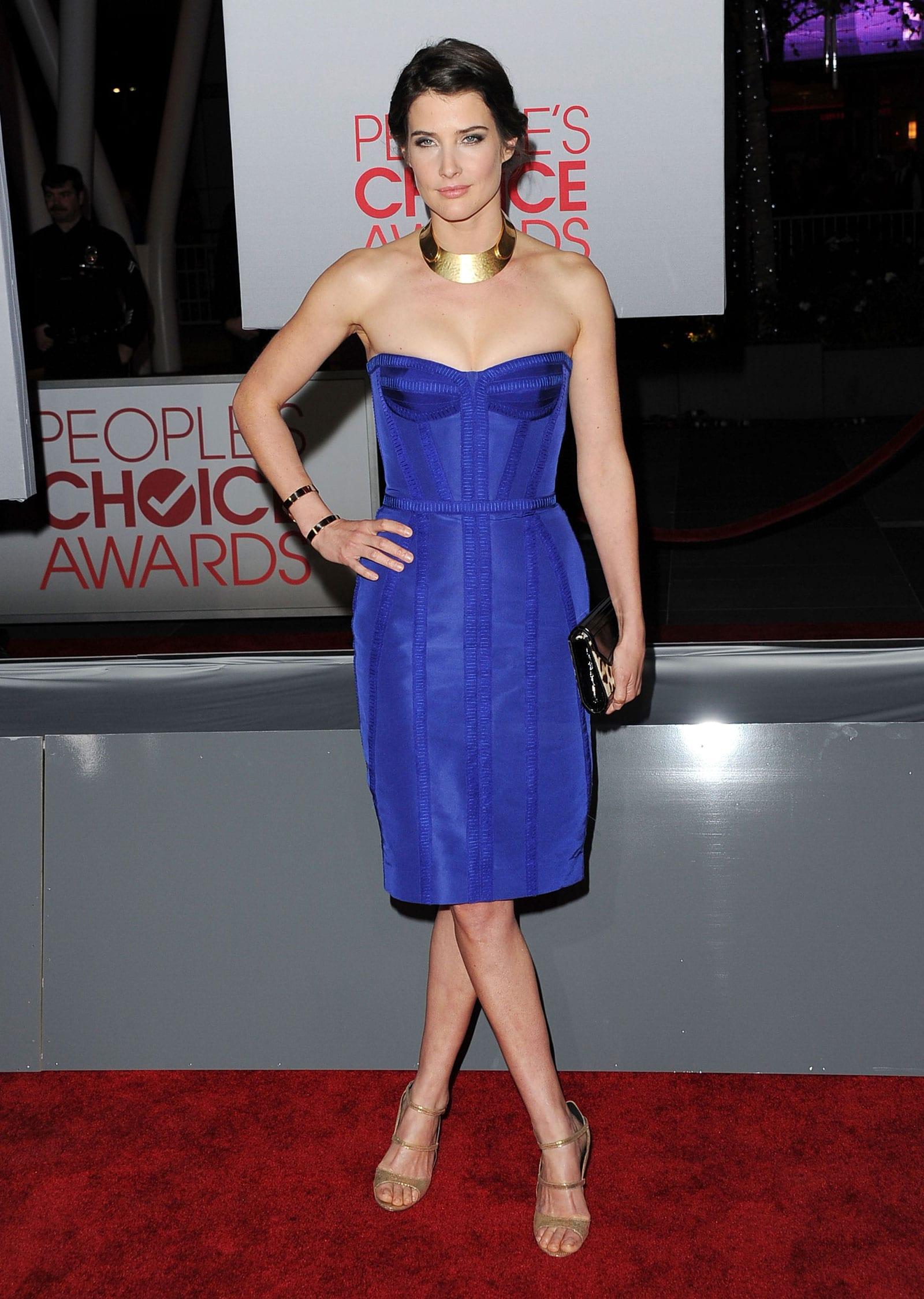 Cobie Smulders Widescreen