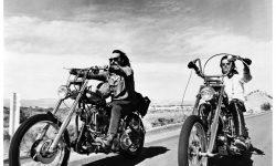 Dennis Hopper Widescreen