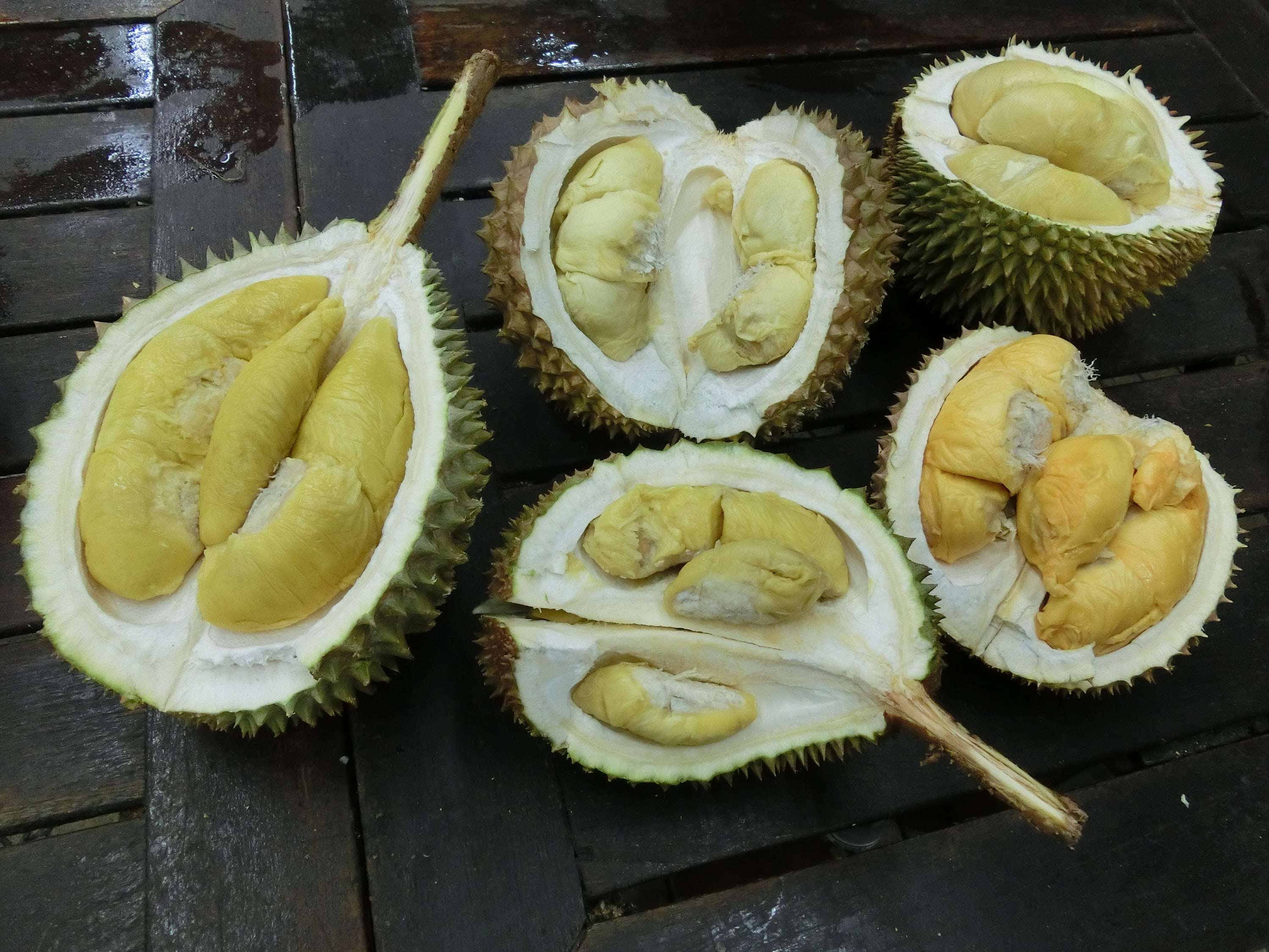 Durian widescreen