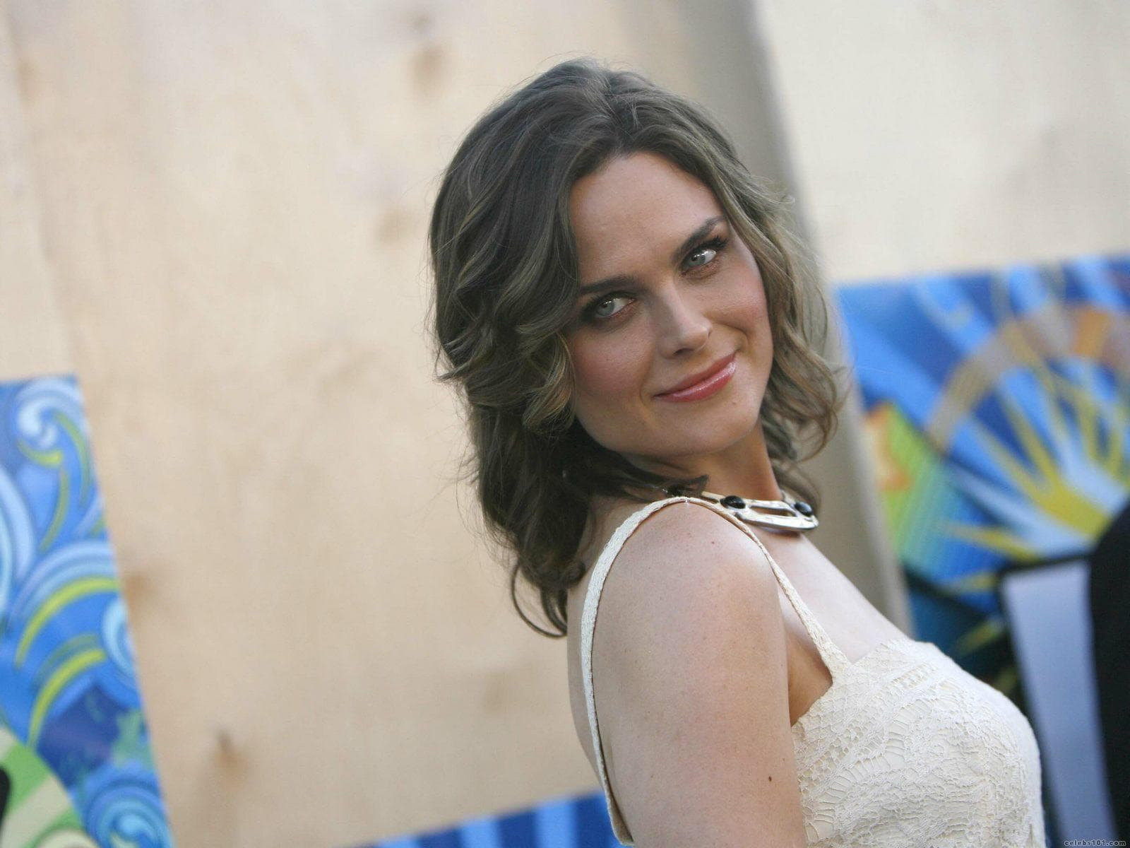 Emily Deschanel Widescreen