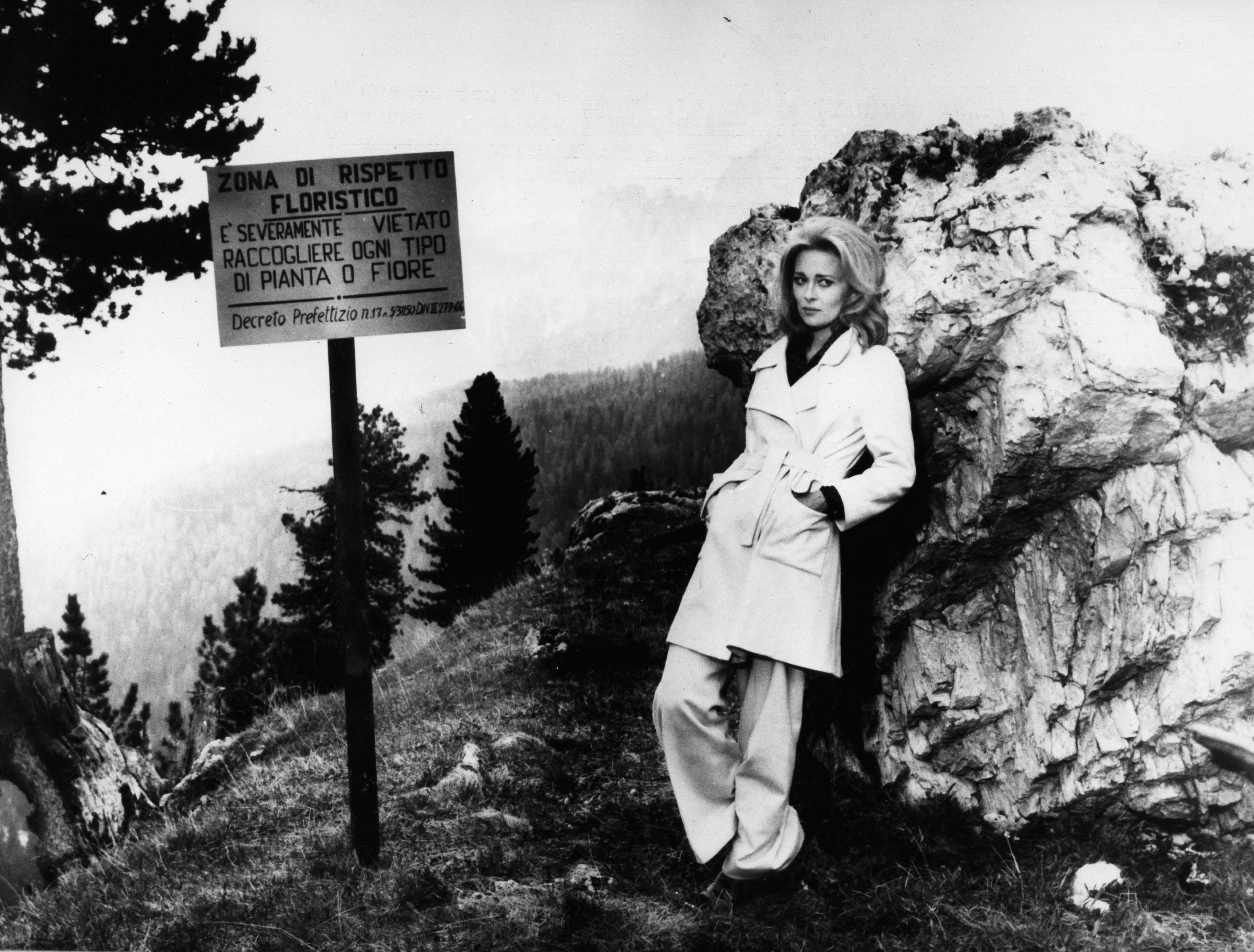 Faye Dunaway Widescreen