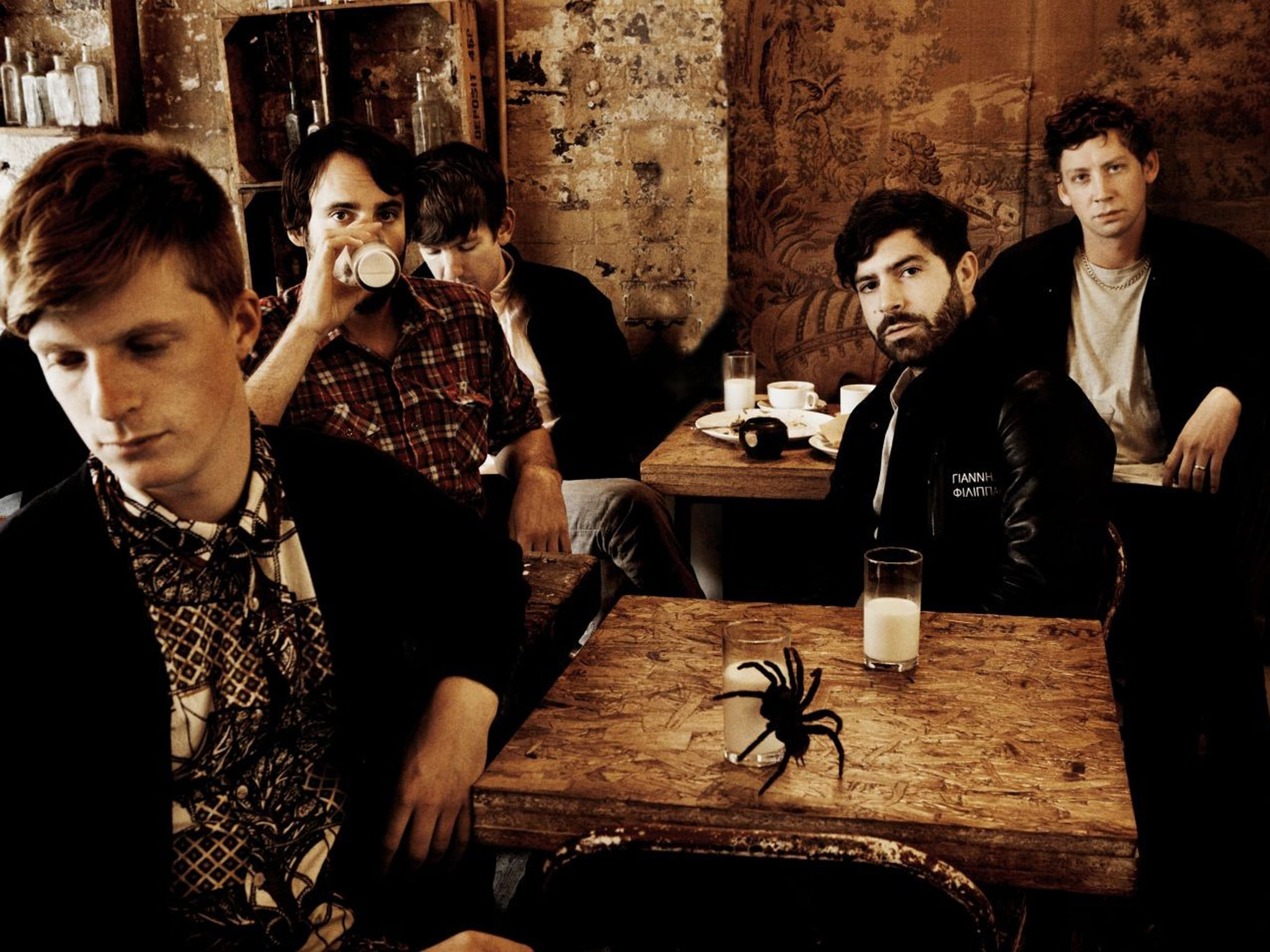 Foals Widescreen