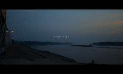 Gone Girl Widescreen