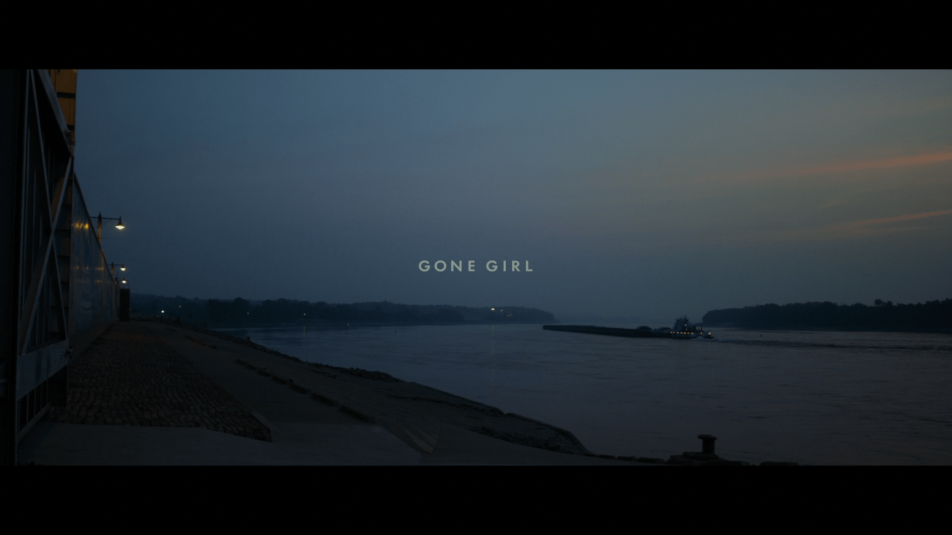 Gone Girl Widescreen