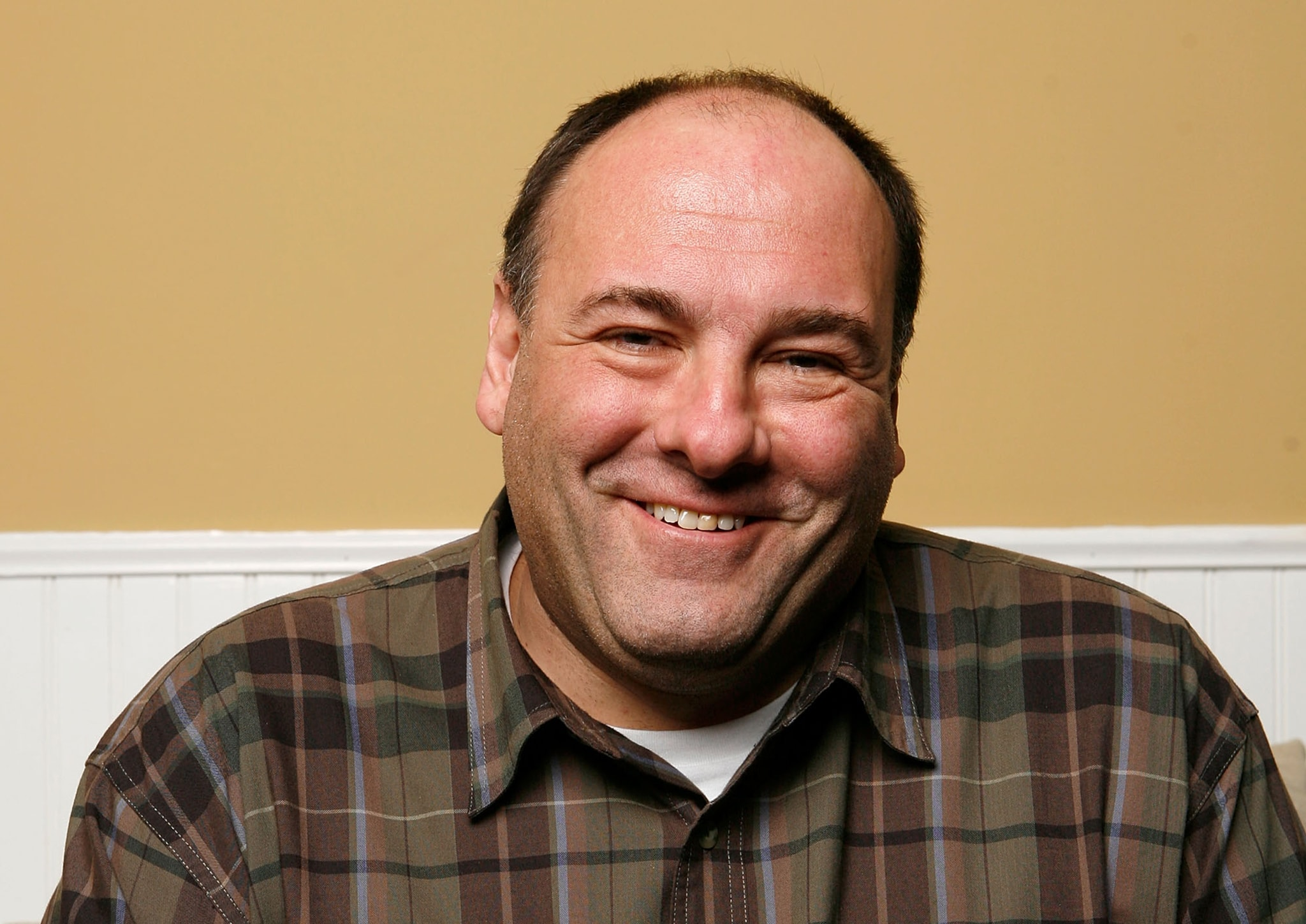James Gandolfini Widescreen