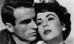 Montgomery Clift Widescreen