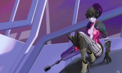 Overwatch : Widowmaker Widescreen