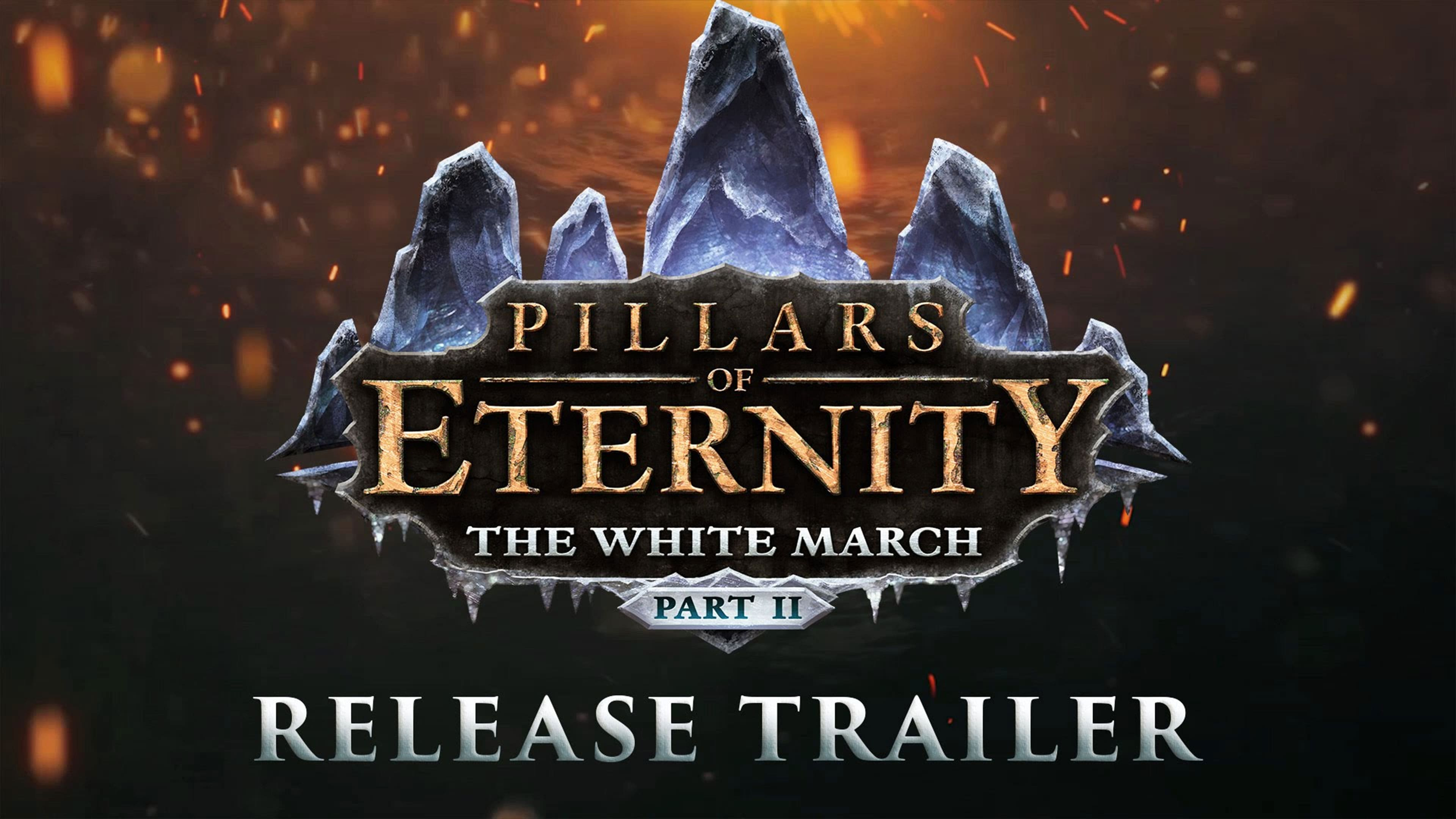 Pillars of Eternity: The White March 2 Widescreen