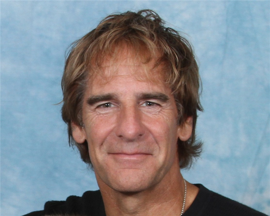 Scott Bakula Widescreen