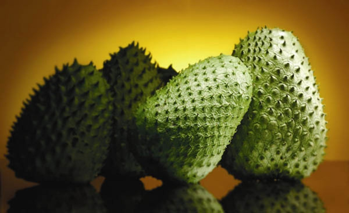 Soursop widescreen