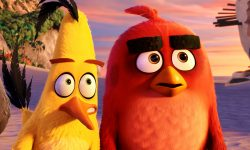 The Angry Birds Movie Widescreen