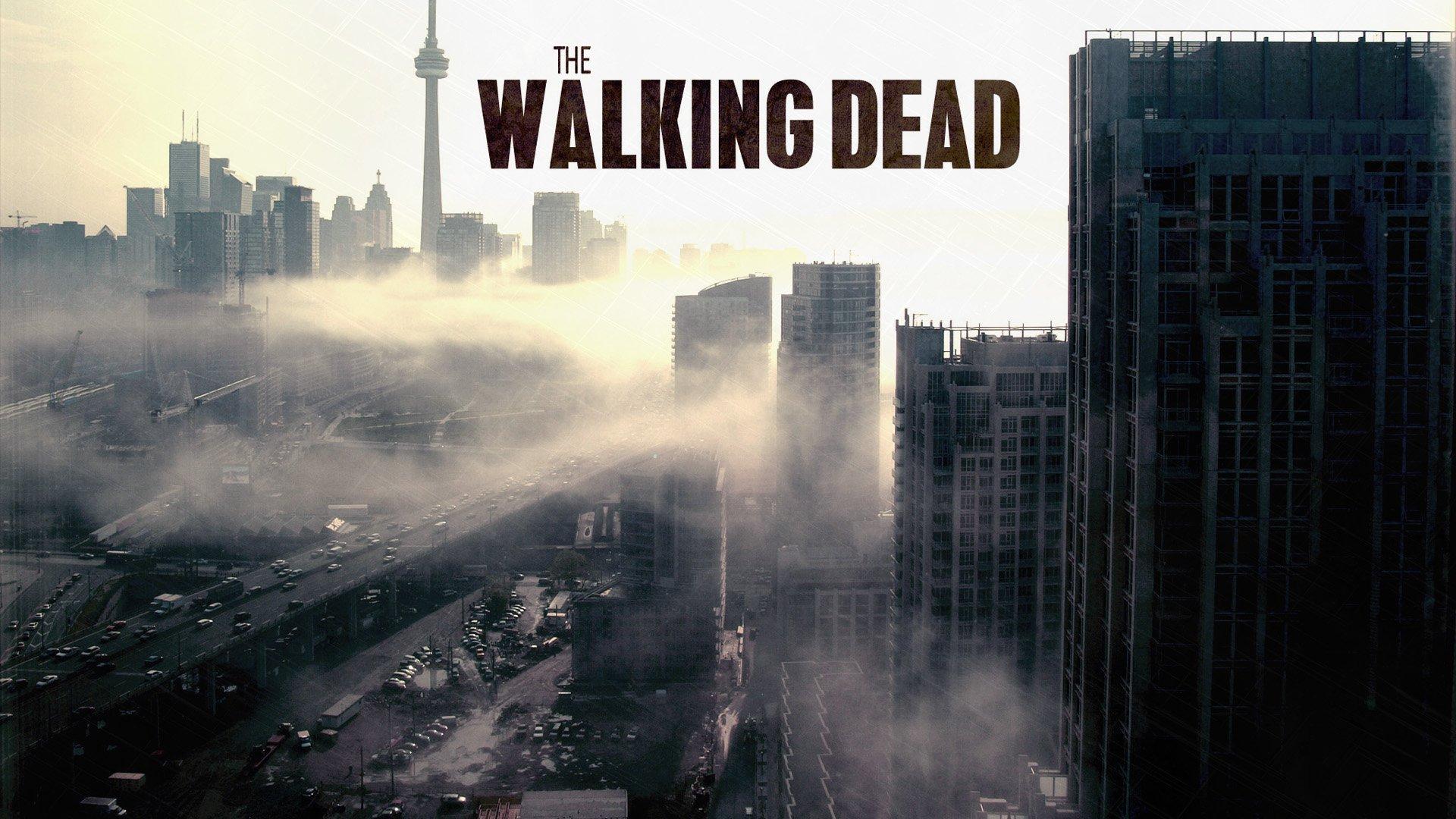 The Walking Dead widescreen