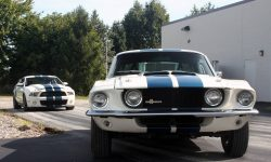 1967 Shelby GT500 Download
